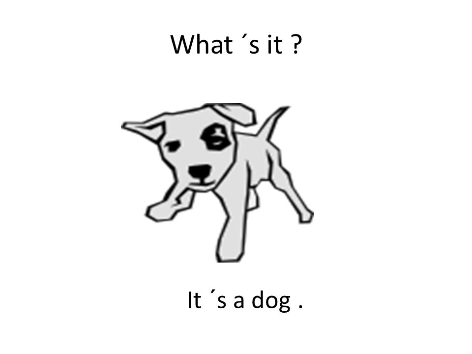 What ´s it It ´s a dog.