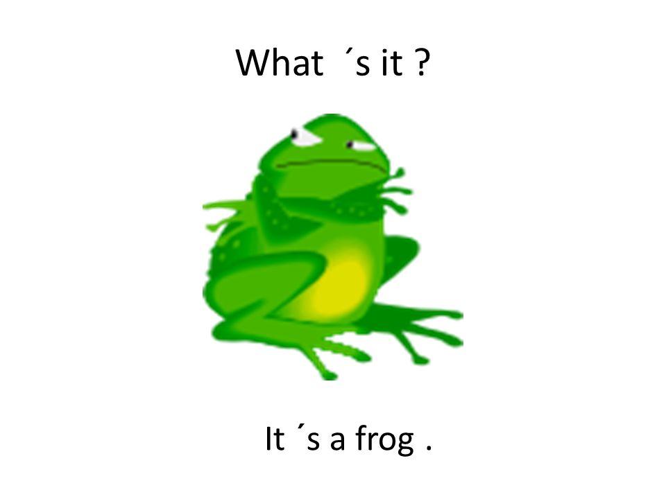 What ´s it It ´s a frog.