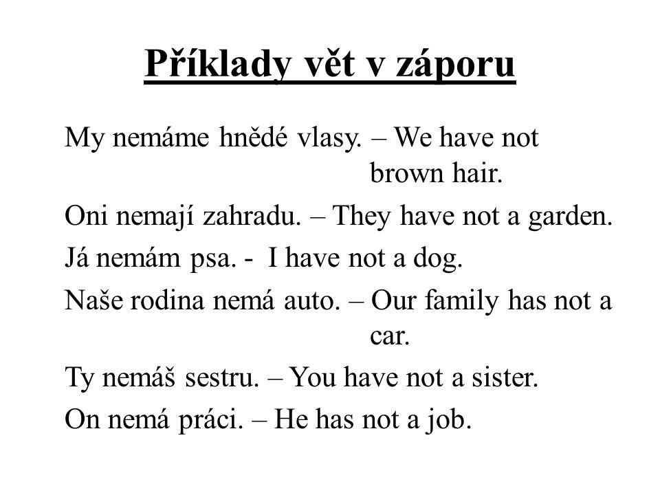 Příklady vět v záporu My nemáme hnědé vlasy. – We have not brown hair. Oni nemají zahradu. – They have not a garden. Já nemám psa. - I have not a dog.