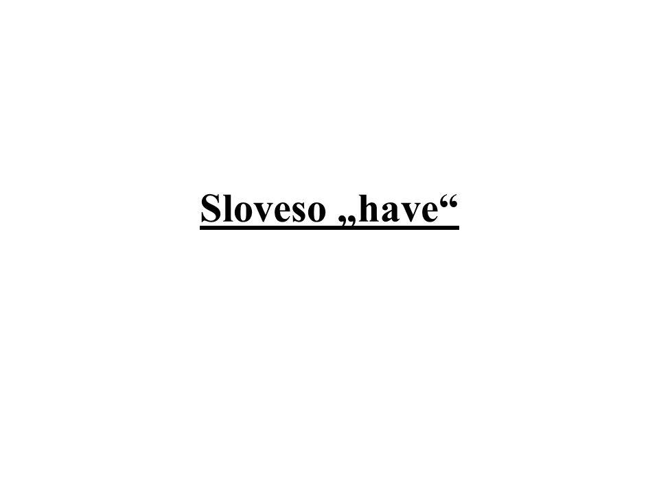 "Sloveso ""have"""