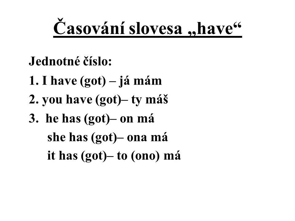 """Časování slovesa """"have"""" Jednotné číslo: 1. I have (got) – já mám 2. you have (got)– ty máš 3. he has (got)– on má she has (got)– ona má it has (got)–"""