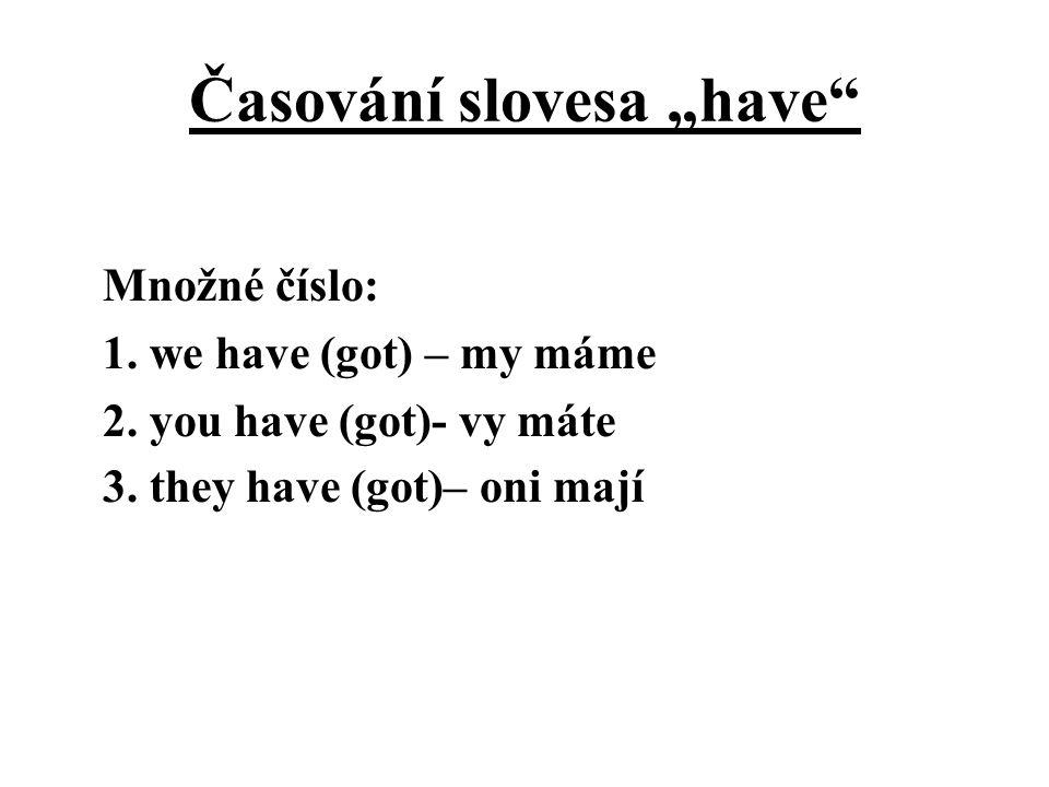 """Časování slovesa """"have"""" Množné číslo: 1. we have (got) – my máme 2. you have (got)- vy máte 3. they have (got)– oni mají"""