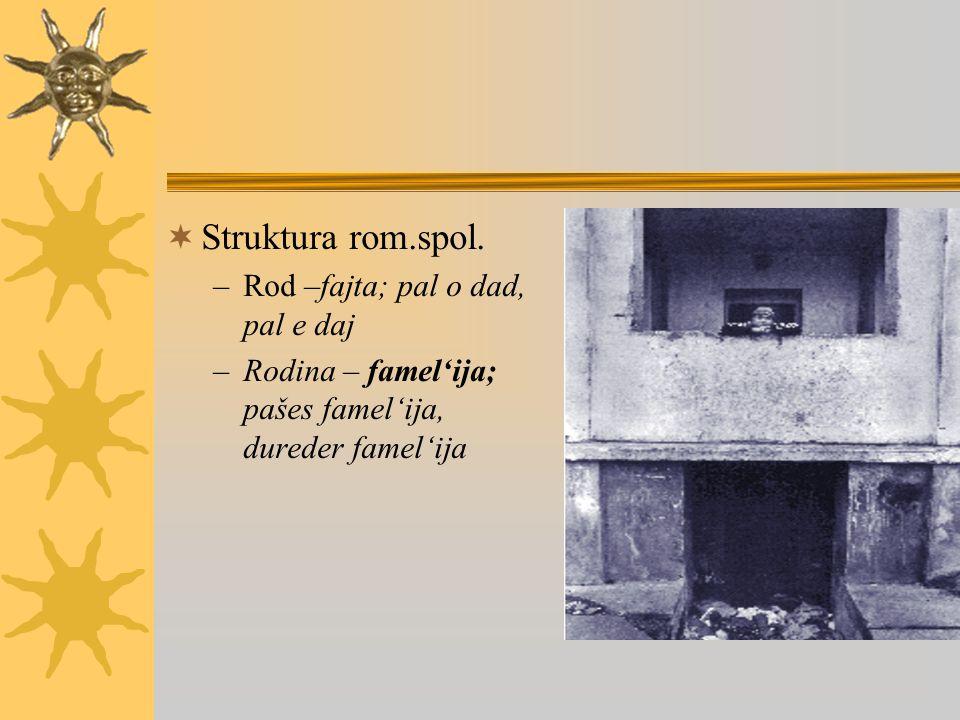  Struktura rom.spol.