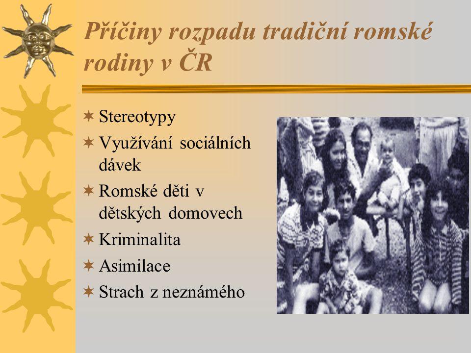 Příčiny rozpadu tradiční romské rodiny v ČR  Stereotypy  Využívání sociálních dávek  Romské děti v dětských domovech  Kriminalita  Asimilace  Strach z neznámého