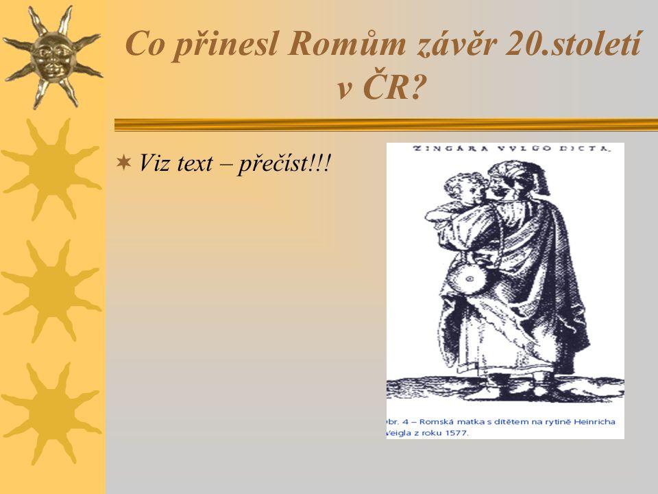 Co přinesl Romům závěr 20.století v ČR  Viz text – přečíst!!!