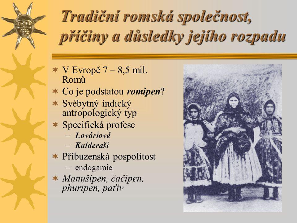 """Tradiční romská společnost, příčiny a důsledky jejího rozpadu  Famel'ija  Specifická orální tvorba –Hádanky, přísloví –Vyprávění o předcích, rodinné historky –Paramisa –Písně """"So na kames te phenel, phen gil'aha"""