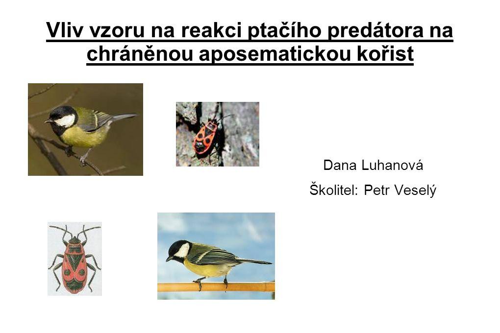 Vliv vzoru na reakci ptačího predátora na chráněnou aposematickou kořist Dana Luhanová Školitel: Petr Veselý