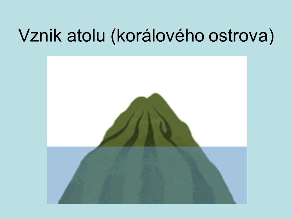 Členitost zemského povrchu Horizontální – je vyjádřena podílem plochy ostrovů a poloo.na celkové ploše kontinentu.
