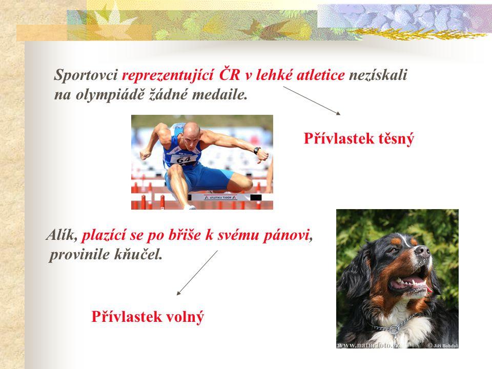 Sportovci reprezentující ČR v lehké atletice nezískali na olympiádě žádné medaile.