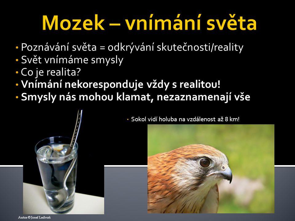 Poznávání světa = odkrývání skutečnosti/reality Svět vnímáme smysly Co je realita? Vnímání nekoresponduje vždy s realitou! Smysly nás mohou klamat, ne