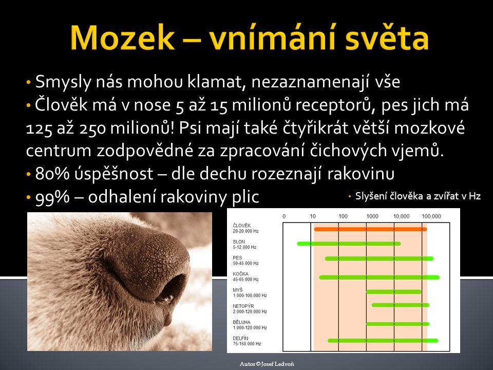 Smysly nás mohou klamat, nezaznamenají vše Člověk má v nose 5 až 15 milionů receptorů, pes jich má 125 až 250 milionů.
