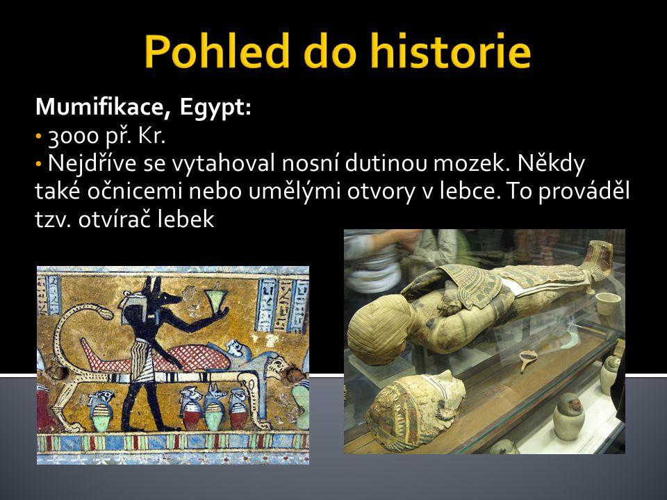Mumifikace, Egypt: 3000 př. Kr. Nejdříve se vytahoval nosní dutinou mozek. Někdy také očnicemi nebo umělými otvory v lebce. To prováděl tzv. otvírač l