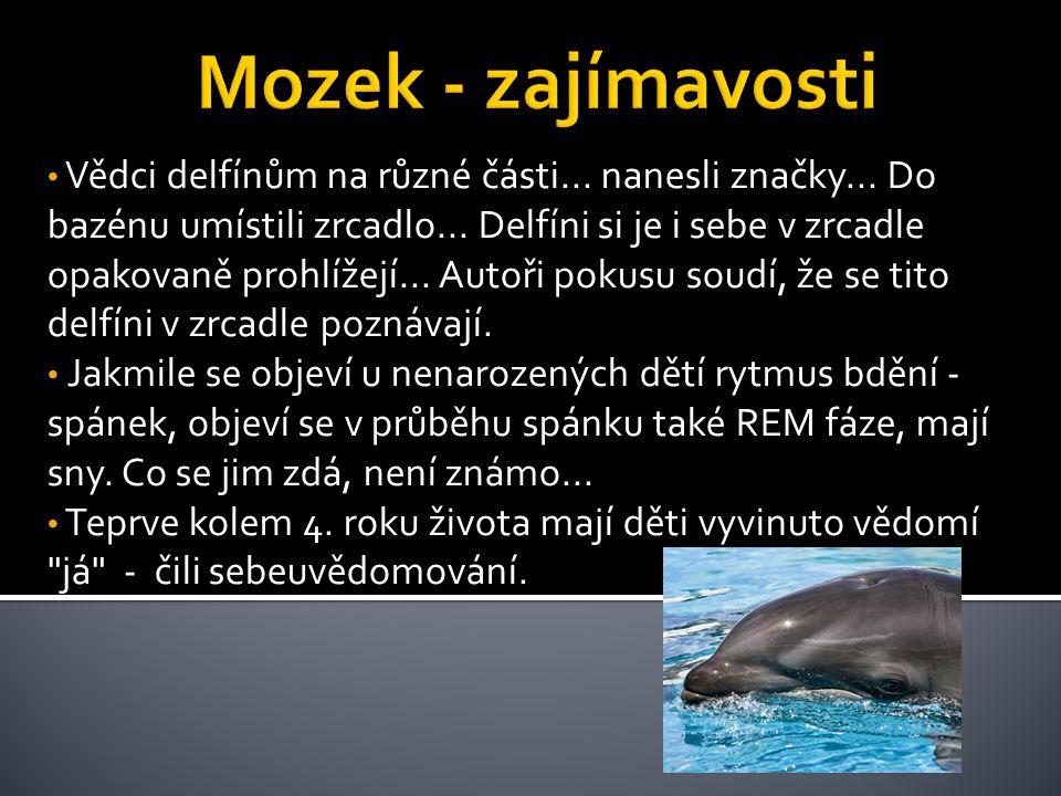 Vědci delfínům na různé části... nanesli značky... Do bazénu umístili zrcadlo... Delfíni si je i sebe v zrcadle opakovaně prohlížejí... Autoři pokusu