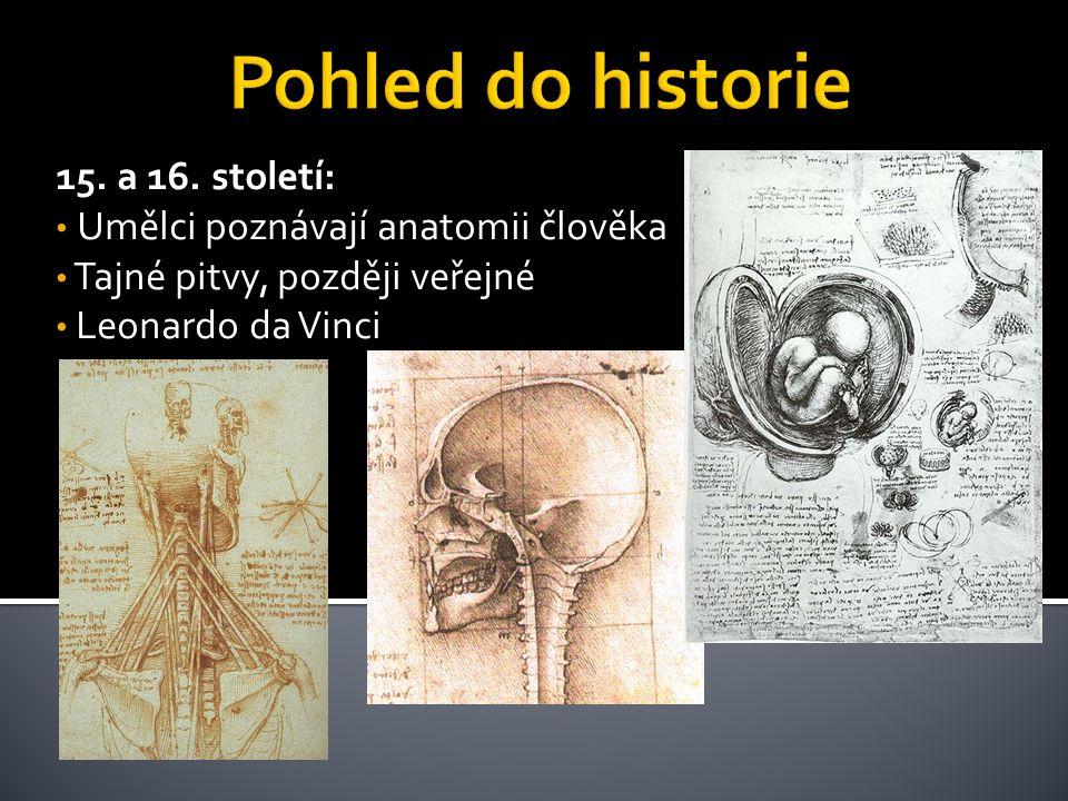 15. a 16. století: Umělci poznávají anatomii člověka Tajné pitvy, později veřejné Leonardo da Vinci