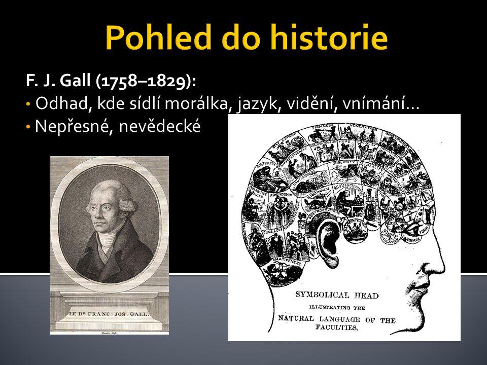 F. J. Gall (1758–1829): Odhad, kde sídlí morálka, jazyk, vidění, vnímání… Nepřesné, nevědecké