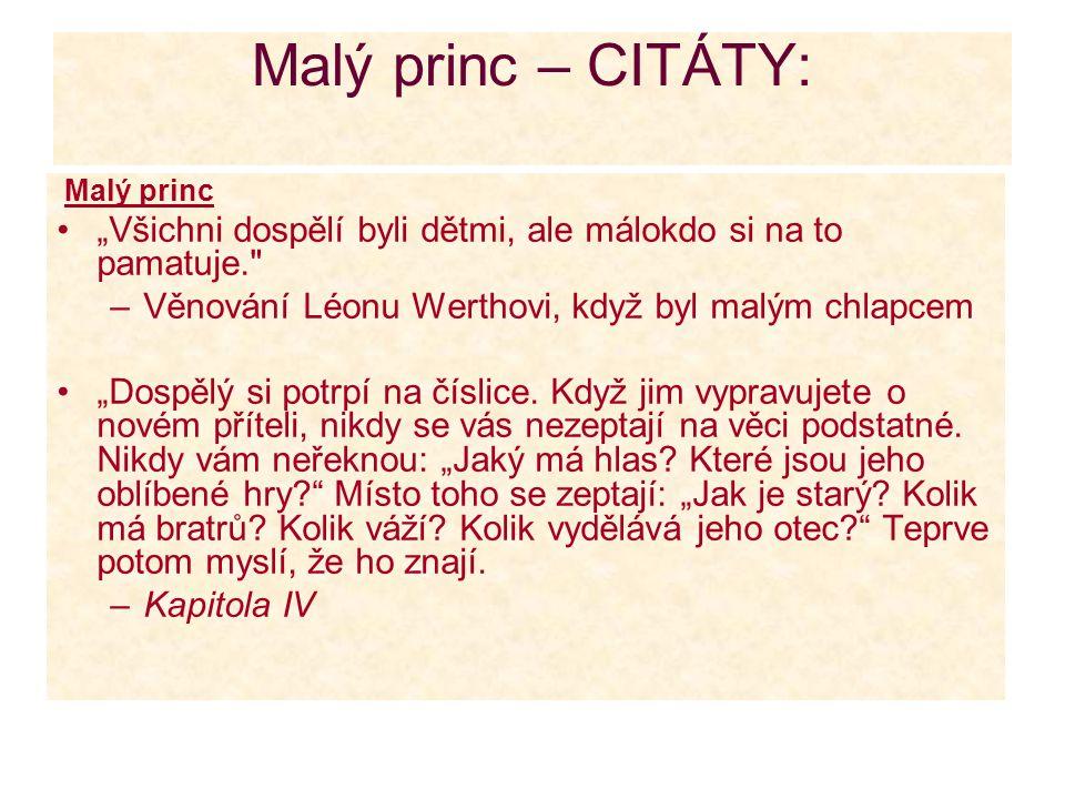 """Malý princ – CITÁTY: Malý princ """"Všichni dospělí byli dětmi, ale málokdo si na to pamatuje."""