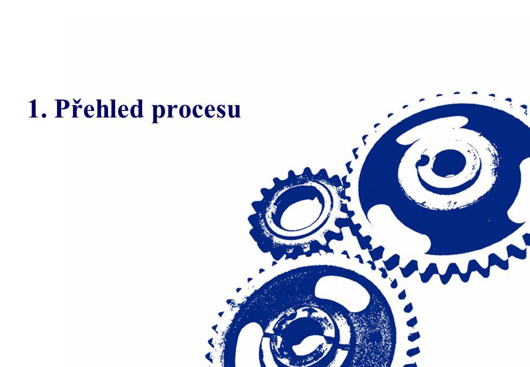 1. Přehled procesu