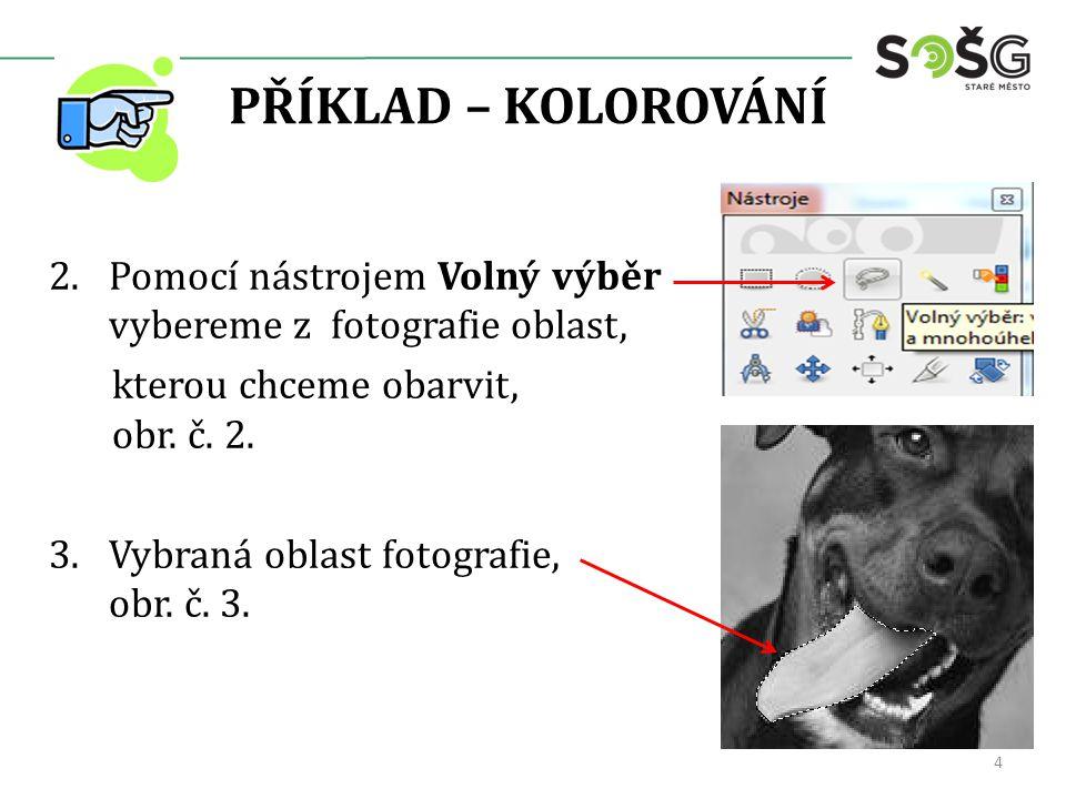 PŘÍKLAD – KOLOROVÁNÍ 2.Pomocí nástrojem Volný výběr vybereme z fotografie oblast, kterou chceme obarvit, obr. č. 2. 3.Vybraná oblast fotografie, obr.