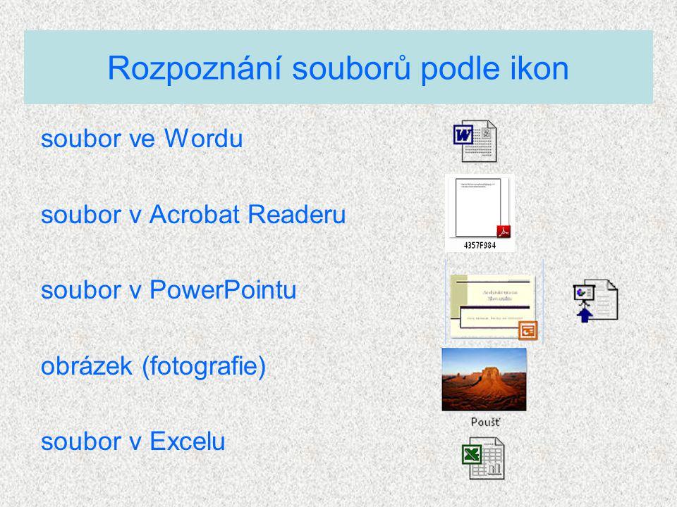 soubor ve Wordu soubor v Acrobat Readeru soubor v PowerPointu obrázek (fotografie) soubor v Excelu Rozpoznání souborů podle ikon