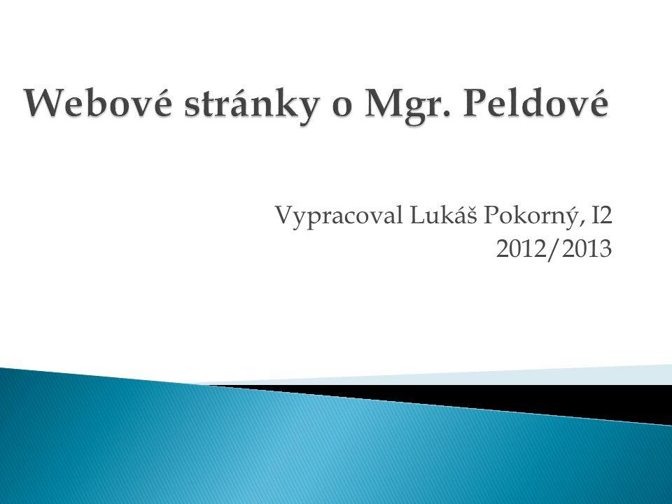 Vypracoval Lukáš Pokorný, I2 2012/2013