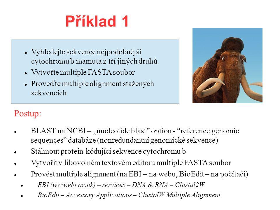 """Příklad 1 Vyhledejte sekvence nejpodobnější cytochromu b mamuta z tří jiných druhů Vytvořte multiple FASTA soubor Proveďte multiple alignment stažených sekvencích BLAST na NCBI – """"nucleotide blast option - reference genomic sequences databáze (nonredundantní genomické sekvence) Stáhnout protein-kódující sekvence cytochromu b Vytvořit v libovolném textovém editoru multiple FASTA soubor Provést multiple alignment (na EBI – na webu, BioEdit – na počítači) EBI (www.ebi.ac.uk) – services – DNA & RNA – Clustal2W BioEdit – Accessory Applications – ClustalW Multiple Alignment Postup:"""