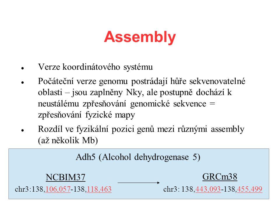 Assembly Verze koordinátového systému Počáteční verze genomu postrádají hůře sekvenovatelné oblasti – jsou zaplněny Nky, ale postupně dochází k neustá