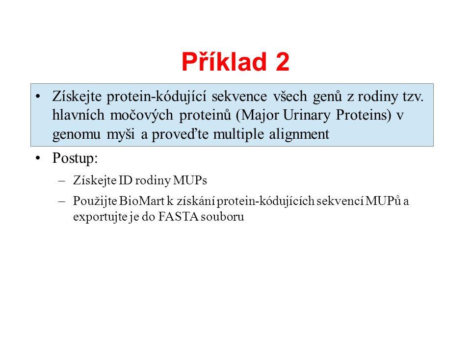Příklad 2 Získejte protein-kódující sekvence všech genů z rodiny tzv. hlavních močových proteinů (Major Urinary Proteins) v genomu myši a proveďte mul