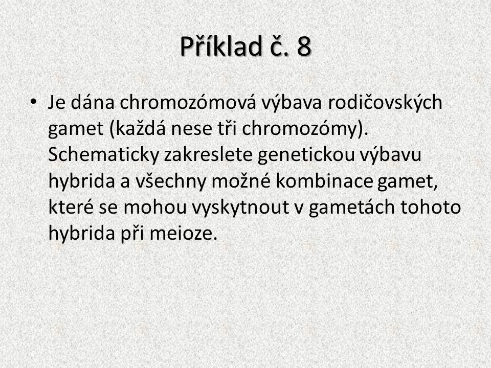 Příklad č. 8 Je dána chromozómová výbava rodičovských gamet (každá nese tři chromozómy). Schematicky zakreslete genetickou výbavu hybrida a všechny mo
