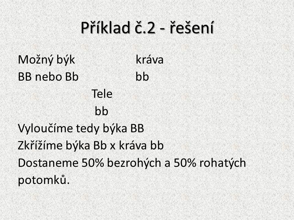 Příklad č.2 - řešení Možný býk kráva BB nebo Bbbb Tele bb Vyloučíme tedy býka BB Zkřížíme býka Bb x kráva bb Dostaneme 50% bezrohých a 50% rohatých po