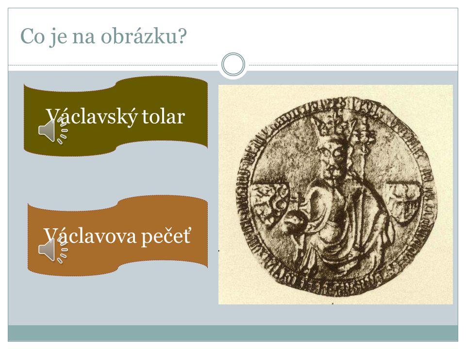 Co je na obrázku? Symbolem Václava byl ledňáček. Václav miloval lov, lázně, přírodu, měl blíže k prostším lidem.