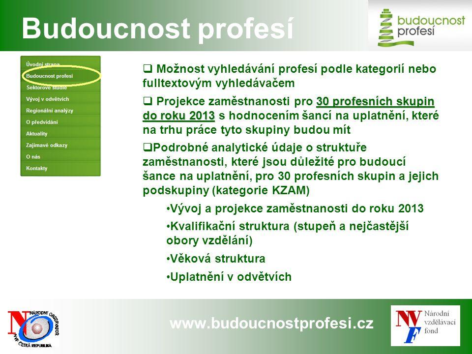 www.budoucnostprofesi.cz  Možnost vyhledávání profesí podle kategorií nebo fulltextovým vyhledávačem 30 profesních skupin do roku 2013  Projekce zam