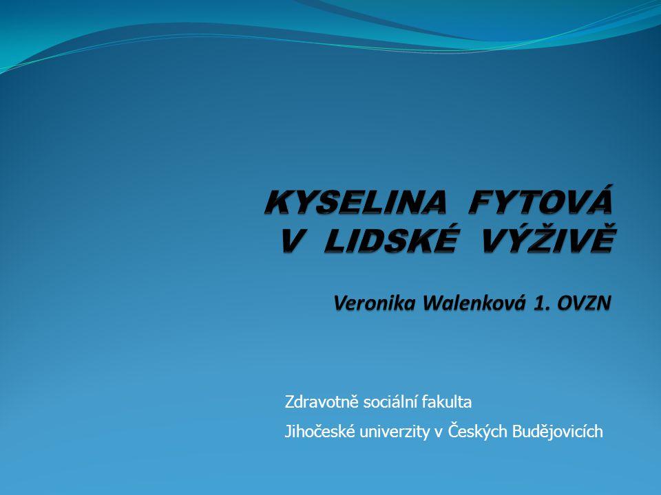 Zdravotně sociální fakulta Jihočeské univerzity v Českých Budějovicích