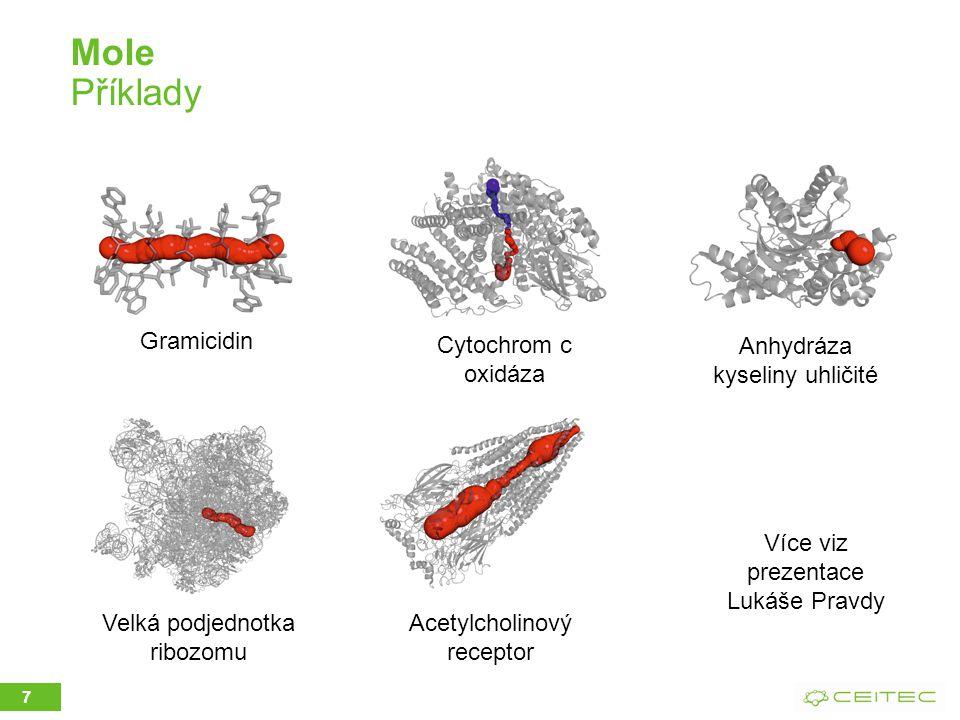 Mole Příklady 7 Gramicidin Velká podjednotka ribozomu Cytochrom c oxidáza Acetylcholinový receptor Anhydráza kyseliny uhličité Více viz prezentace Lukáše Pravdy