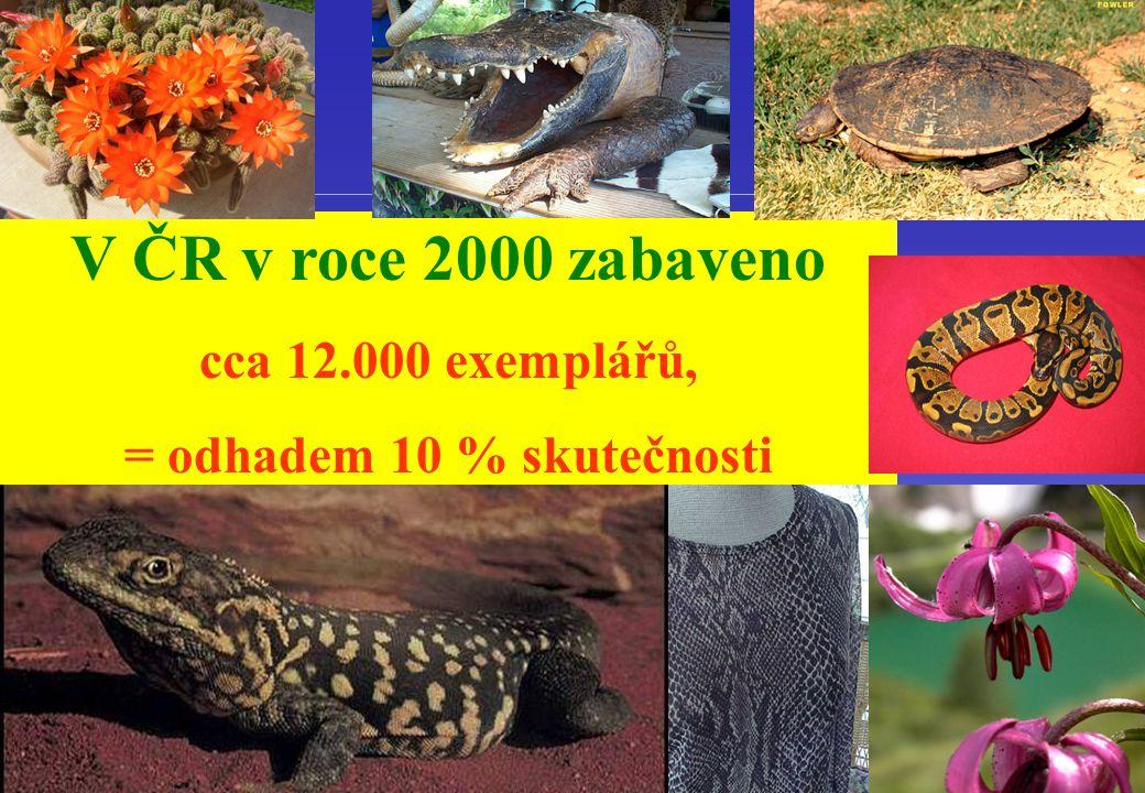 V ČR v roce 2000 zabaveno cca 12.000 exemplářů, = odhadem 10 % skutečnosti