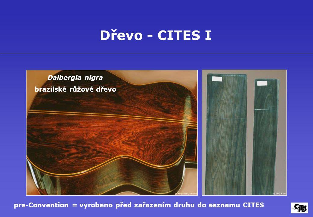 Dřevo - CITES I Dalbergia nigra brazilské růžové dřevo pre-Convention = vyrobeno před zařazením druhu do seznamu CITES