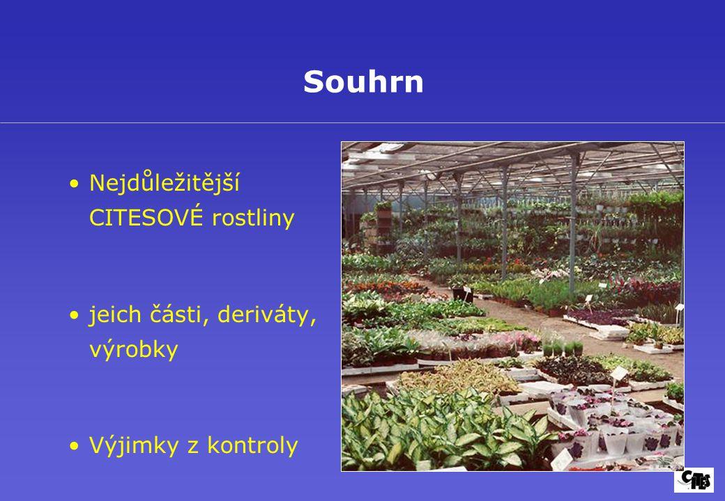 Nejdůležitější CITESOVÉ rostliny jeich části, deriváty, výrobky Výjimky z kontroly Souhrn