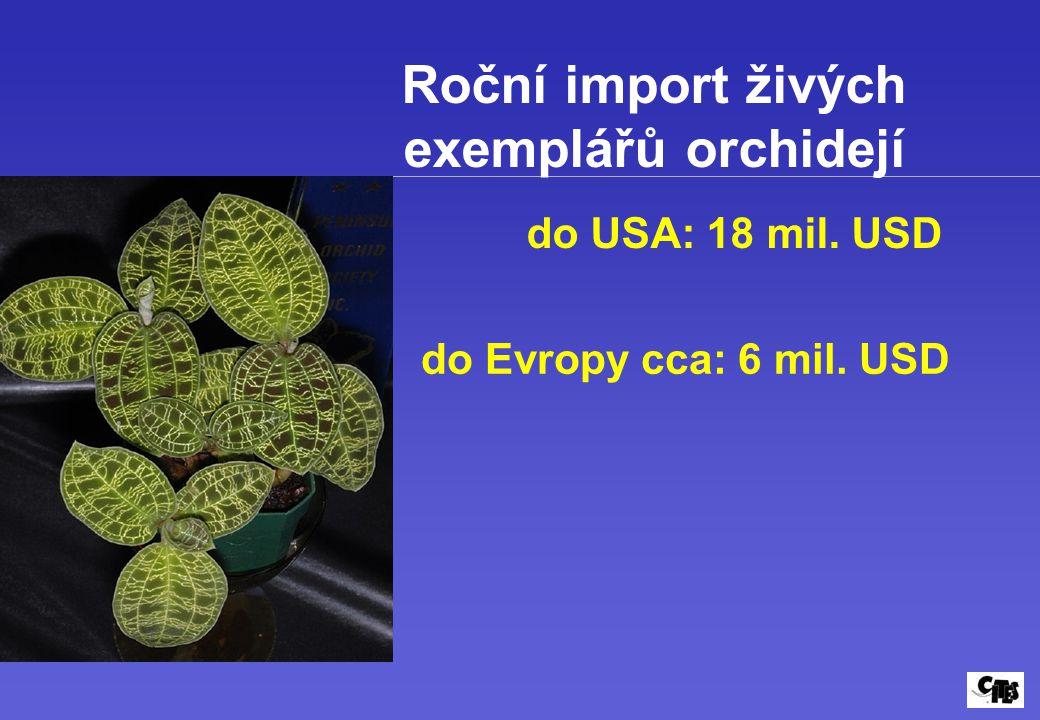 Roční import živých exemplářů orchidejí do USA: 18 mil. USD do Evropy cca: 6 mil. USD