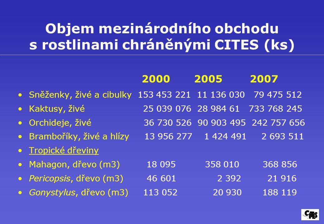 Objem mezinárodního obchodu s rostlinami chráněnými CITES (ks) 2000 2005 2007 Sněženky, živé a cibulky 153 453 221 11 136 030 79 475 512 Kaktusy, živé