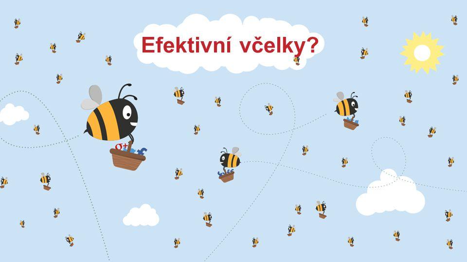 Efektivní včelky?