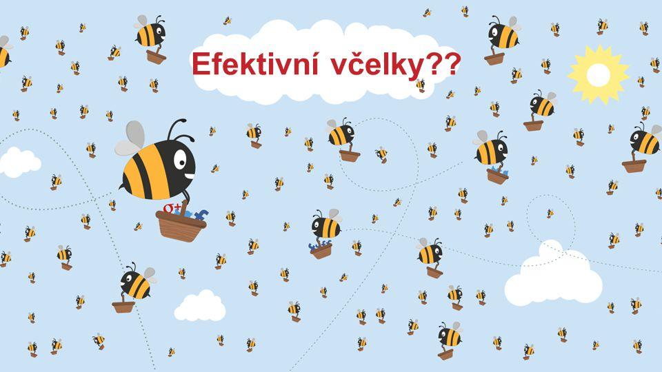 Efektivní včelky??