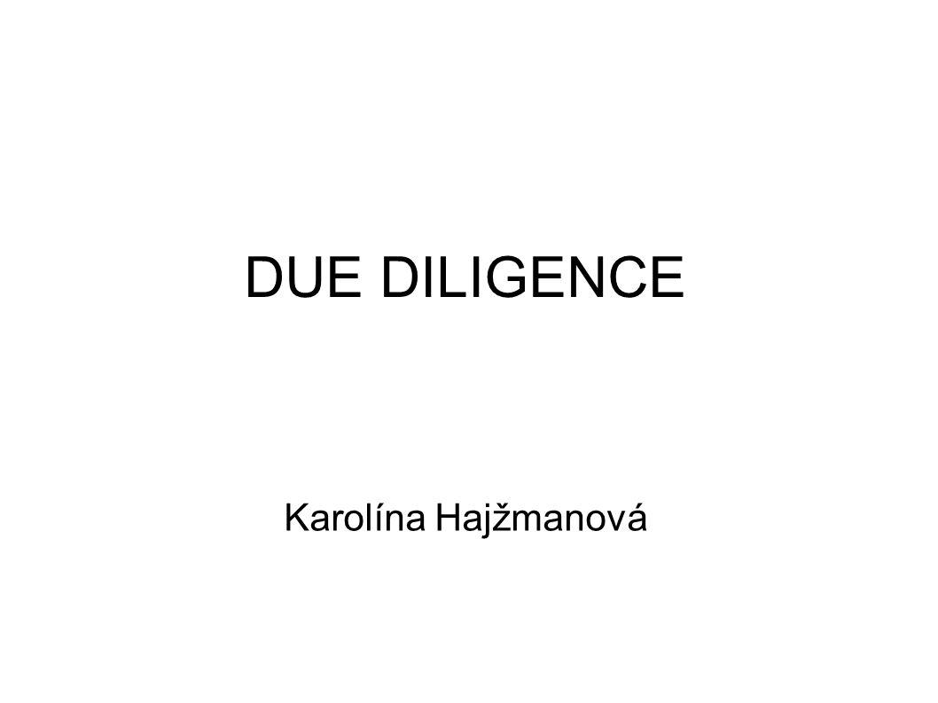 DUE DILIGENCE Karolína Hajžmanová