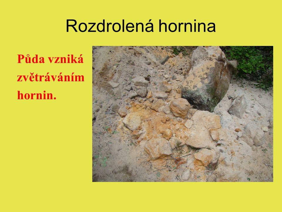 Rozdrolená hornina Půda vzniká zvětráváním hornin.