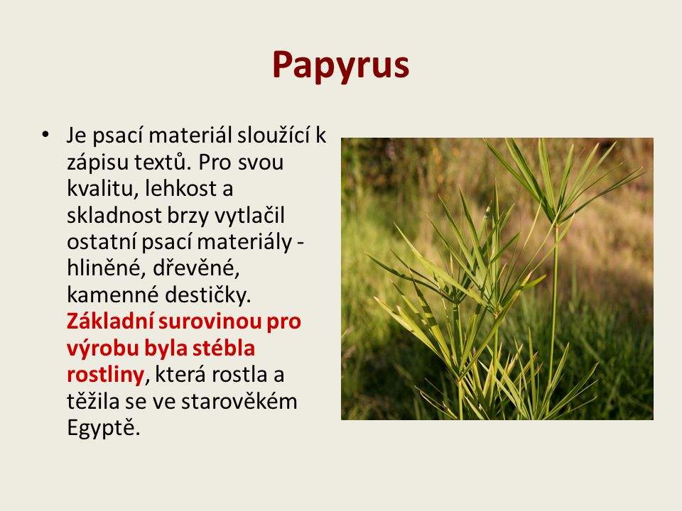 Papyrus Je psací materiál sloužící k zápisu textů. Pro svou kvalitu, lehkost a skladnost brzy vytlačil ostatní psací materiály - hliněné, dřevěné, kam