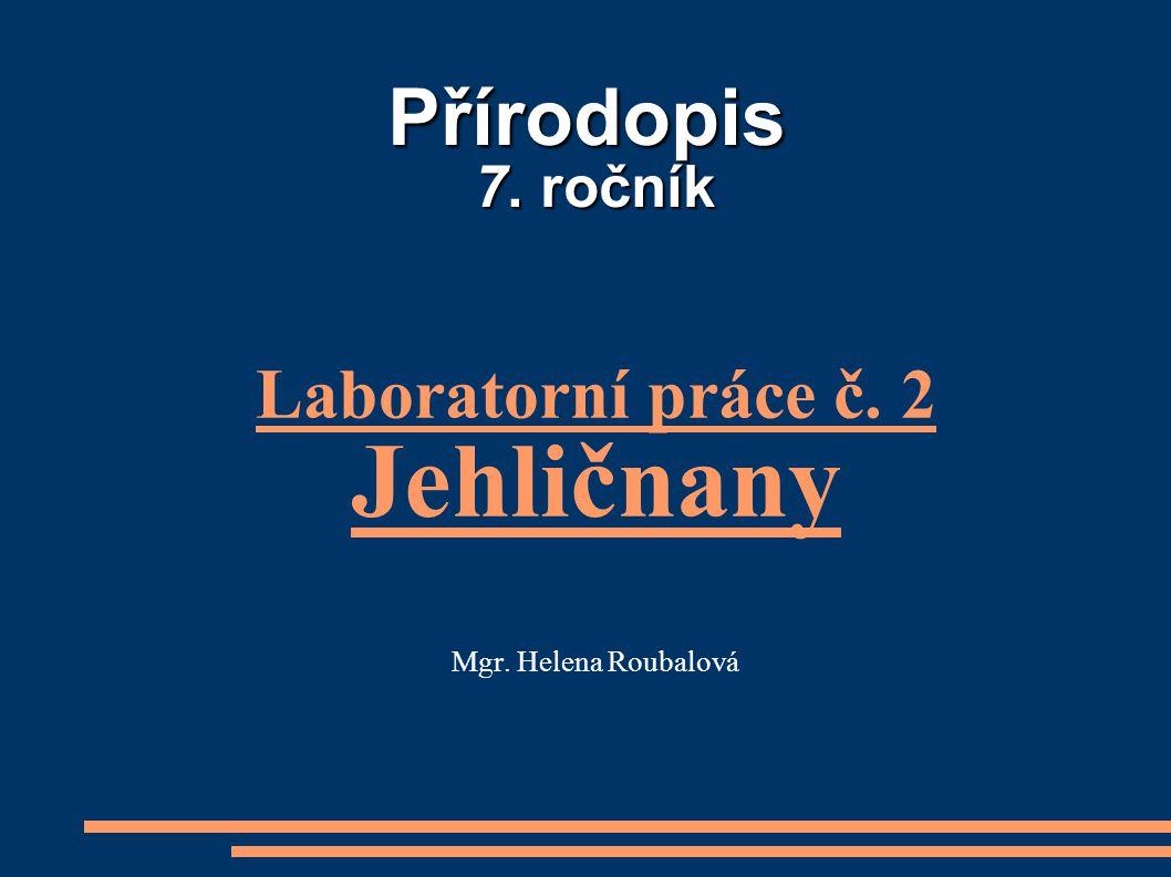 Přírodopis 7. ročník Laboratorní práce č. 2 Jehličnany Mgr. Helena Roubalová