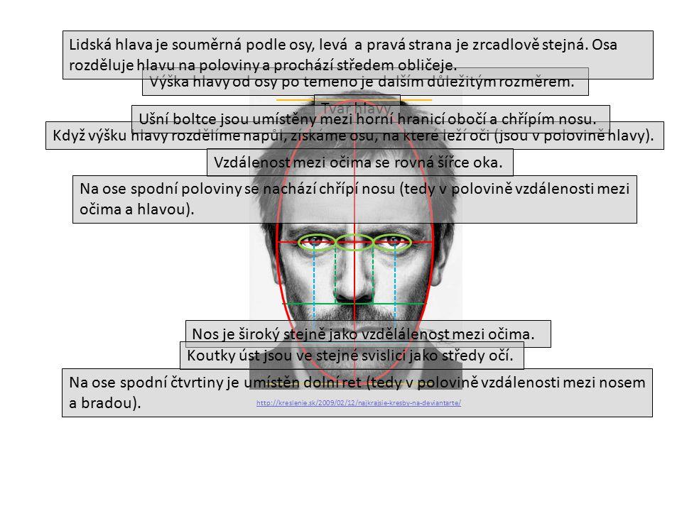 http://kreslenie.sk/2009/02/12/najkrajsie-kresby-na-deviantarte/ Když výšku hlavy rozdělíme napůl, získáme osu, na které leží oči (jsou v polovině hlavy).