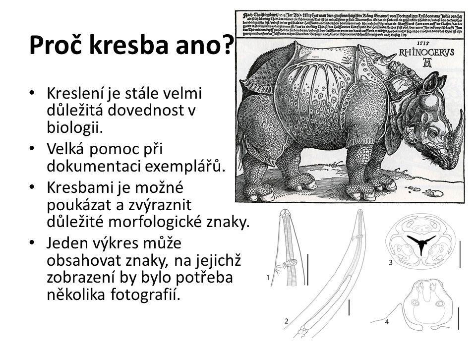 Základní zásady pro kreslení: kreslit na bílý, nelinkovaný papír kreslit co největší obrázky (alespoň na půl A4) pokud není použito kreslící zařízení: zpětně kontrolovat obraz v mikroskopu, či kreslit jedním okem vně mikroskopu při prokreslování měnit fokusaci – zisk různých hloubek obrazu v 1 nákresu pokud se některé orgány překrývají – překryté kreslit čárkovaně nebo odlišit barevně doplnit název (příp.