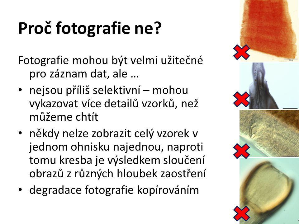Proč fotografie ne? Fotografie mohou být velmi užitečné pro záznam dat, ale … nejsou příliš selektivní – mohou vykazovat více detailů vzorků, než může
