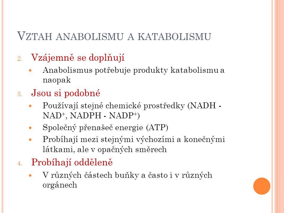V ZTAH ANABOLISMU A KATABOLISMU 2. Vzájemně se doplňují Anabolismus potřebuje produkty katabolismu a naopak 3. Jsou si podobné Používají stejné chemic