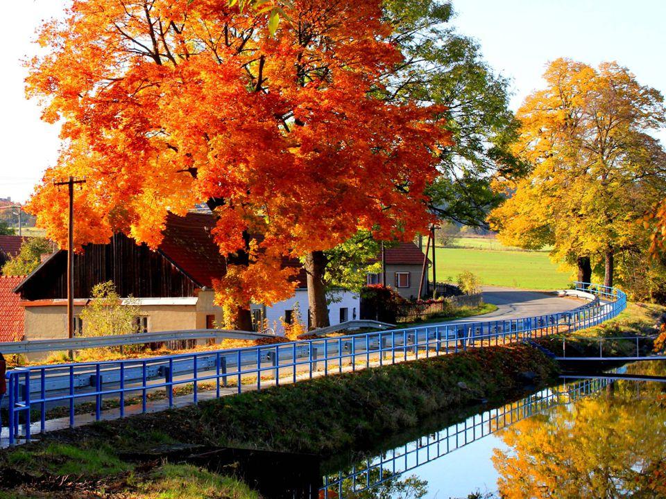 Tak se podívejte, že to stálo za to pobýt hodnou chvíli a podívat se na tu krásu podzimu