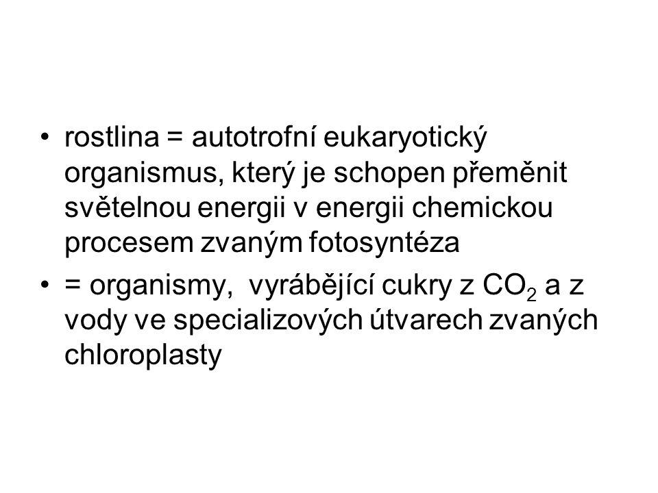 rostlina = autotrofní eukaryotický organismus, který je schopen přeměnit světelnou energii v energii chemickou procesem zvaným fotosyntéza = organismy, vyrábějící cukry z CO 2 a z vody ve specializových útvarech zvaných chloroplasty